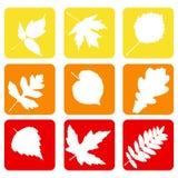 Fije los iconos de la naturaleza. Fotos de archivo