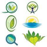 Fije los iconos de la naturaleza - elementos del follaje libre illustration