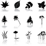 Fije los iconos - naturaleza 9. Fotografía de archivo libre de regalías