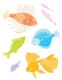 Fije los pescados tropicales de los colores. Fotografía de archivo