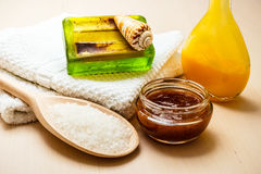 Fije para el cuidado del cuerpo de la piel, accesorios del baño Foto de archivo libre de regalías