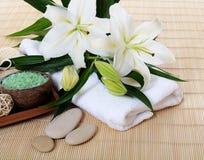 Fije para los balneario-procedimientos en la manta de bambú Imagen de archivo libre de regalías