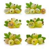 Fije si las grosellas espinosas verdes maduras con las hojas aisladas en blanco Imagen de archivo libre de regalías