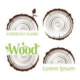 Fije un corte transversal del tronco con los anillos de árbol Ilustración del vector LOGOTIPO Anillos de crecimiento del árbol Co ilustración del vector