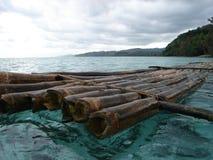 fiji för 3 bambu raft Royaltyfri Bild