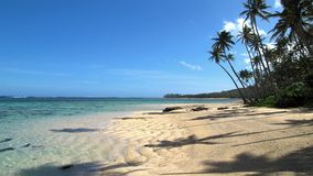 Fiji island best ever beach photo. Natural panorama. High palms, forest and clear blue sky. This photo can be used for press, covers, review, magazines, book royalty free stock image