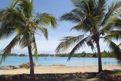 Fiji Island, Royalty Free Stock Photography
