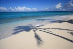 Fiji-Islands. Palm shadows at the beach, fiji-ilands, australasian, oceania Stock Photography