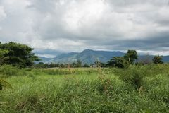 Fiji Mountains. Mountain landscape with rainforest, plants and cumulus clouds in Port Denarau, Fiji Royalty Free Stock Photos