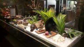 Fiji - restaurante intercontinentales de Navo fotos de archivo libres de regalías