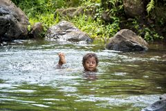 Fijian boy swimming in natural pond at rainforest royalty free stock photography