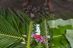 Fijian food Lovo in Fiji Islands. Fijian food Lovo. Lovo Fijian cooking food underground is commonly made during special events such as funerals, weddings Royalty Free Stock Images