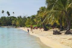 Fijiansk ö, royaltyfria foton