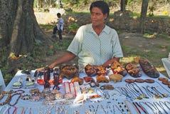 Fijiansk ö, royaltyfri foto