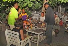 Fijiansk ö, arkivfoto