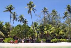 Fijiansk ö royaltyfri foto