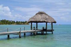 Fijiansk ö royaltyfri fotografi