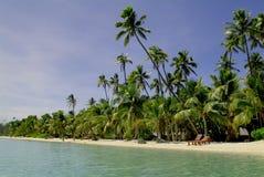 Fijiansk ö royaltyfri bild