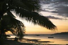 Fijiansk ö, soluppgång royaltyfri fotografi