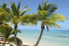 Fijiansk ö, strand fotografering för bildbyråer