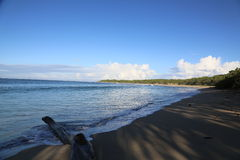 Fijiansk strand Royaltyfri Fotografi