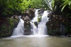 Fijiansk vattenfall Arkivfoton