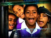 Fijianska ungar Arkivfoton