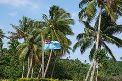 Fijianvlag met palmen bij Beqa-Eiland, Fiji stock foto