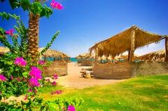 Fijne bloemen en exotisch strand. Stock Afbeelding