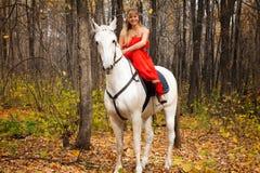 Fijne jonge vrouw op horseback op wit paard stock foto
