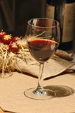 Fijne rode wijn Royalty-vrije Stock Foto's