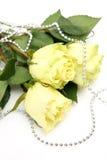 Fijne rozen Stock Afbeelding