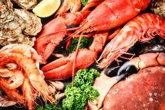 Fijne selectie van schaaldier voor diner Zeekreeft, krab en jumbo stock foto's