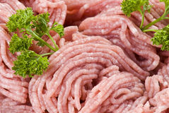 Fijngehakt varkensvlees royalty-vrije stock foto's