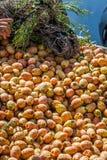 Fikonträdet bär frukt i den Marrakesh marknaden i Marocko Royaltyfri Foto