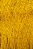 Filé en soie cru et non transformé des cocons jaunes du ver à soie Photographie stock libre de droits