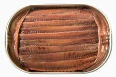 Filéer av ansjovisar i olivolja Arkivfoton