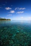 Filón coralino e isla Imágenes de archivo libres de regalías