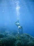 Filón coralino que bucea Fotos de archivo