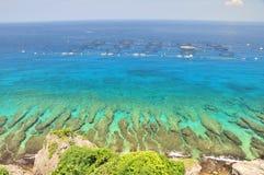 Filón coralino y océano azul Imagen de archivo libre de regalías