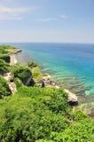 Filón coralino y océano azul Foto de archivo libre de regalías