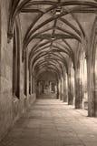 Filósofos Pasillo fotos de archivo libres de regalías
