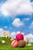 Fil à tricoter avec des moutons Images libres de droits