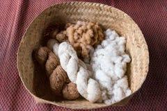 Fil fait main de la fleur de coton Le coton est un St mou et pelucheux Photos libres de droits