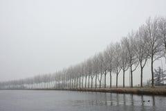 Fila de árboles a lo largo de un canal brumoso Imagenes de archivo