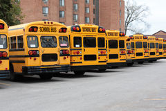 Fila de autobuses escolares Fotografía de archivo libre de regalías