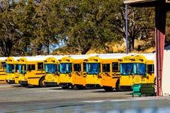 Fila de autobuses escolares amarillos Imágenes de archivo libres de regalías