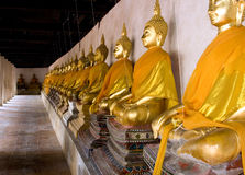 Fila de buddhas Foto de archivo libre de regalías