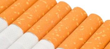 Fila de cigarrillos en el fondo blanco Fotografía de archivo
