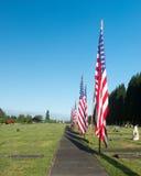Fila de gflags americanos en el cementerio fotografía de archivo libre de regalías